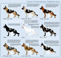 German Shepherd Colors by MauserGirl