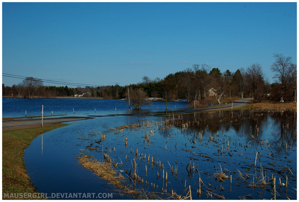 Flooded Fields by MauserGirl
