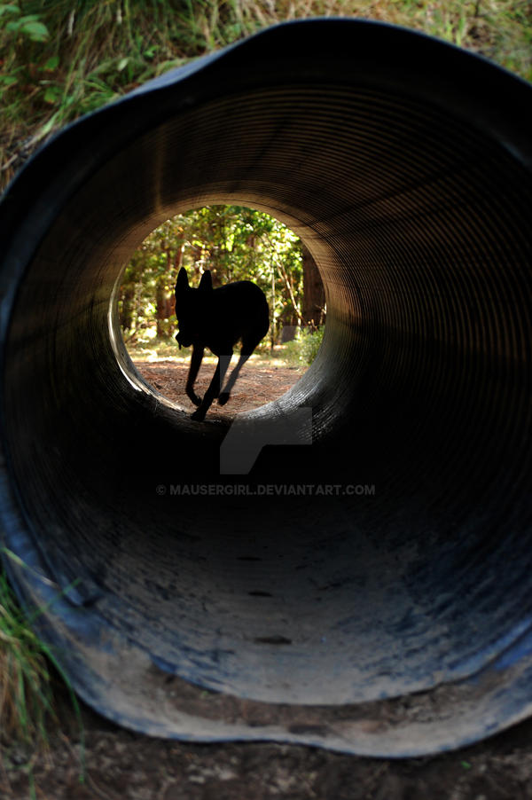Tunnel by MauserGirl