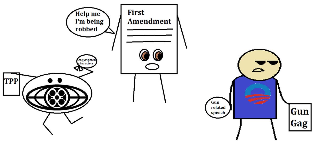 The 13 amendments