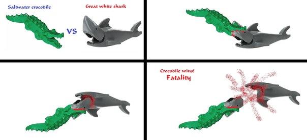 самом гребнистый крокодил или большая белая акула образом, помощью