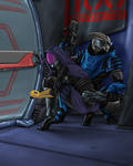 Or we could just get a krogan