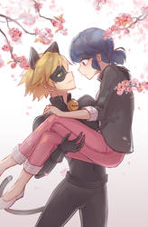 Miraculous Ladybug: MariChat in Spring