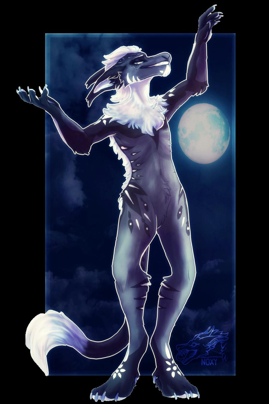 Moondance by N-o-x-y
