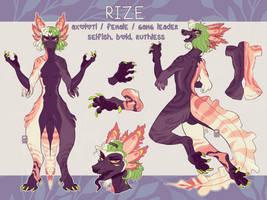 RIZE Reference sheet