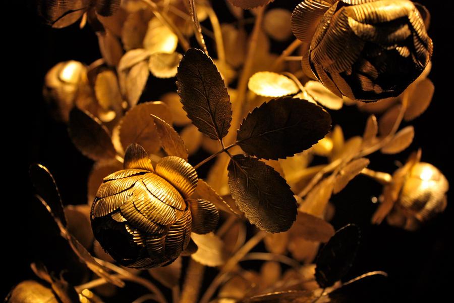 Golden Rose Wallpaper Golden Rose by Thatmusic