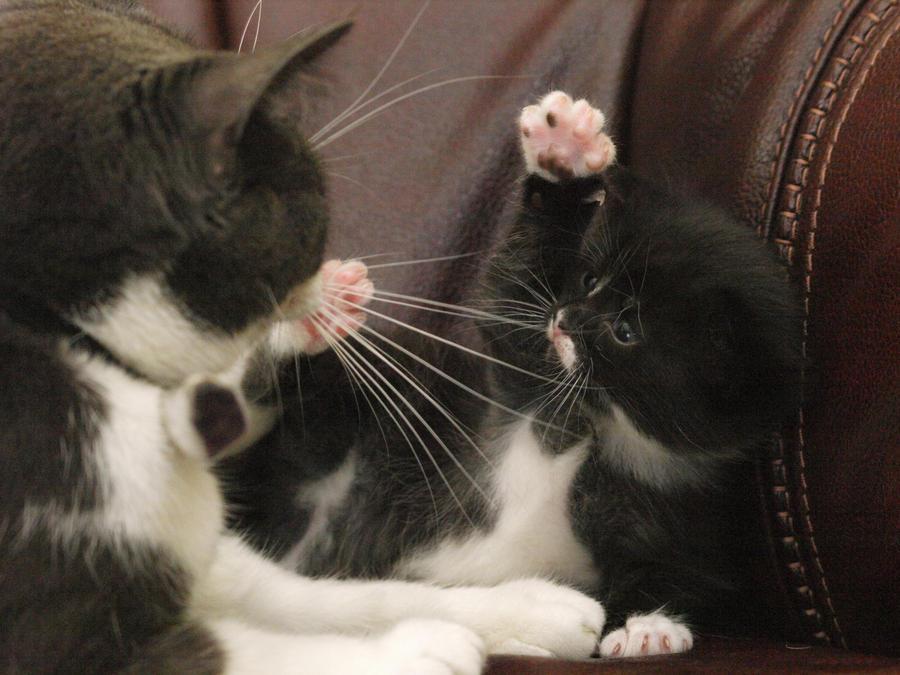 mum stop washing me by nesslauncher1