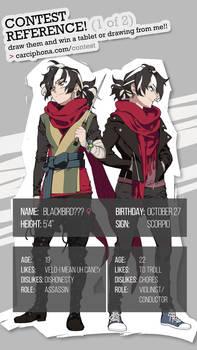 Blackbird character sheet