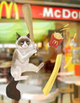 Grumpy Cat at McDonald's by Reiuu