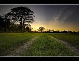 Farm Land at Sundown by Mfotografie