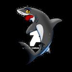 Grey reef shark - Chibi