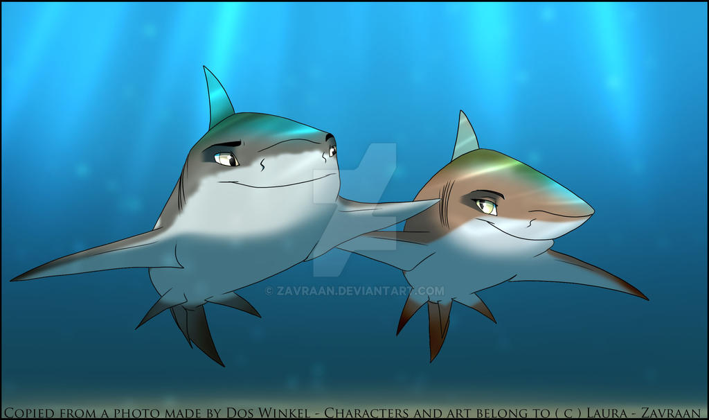 shark love old drawing by zavraan on  shark love old drawing by zavraan