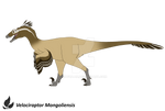 Velociraptor - Design