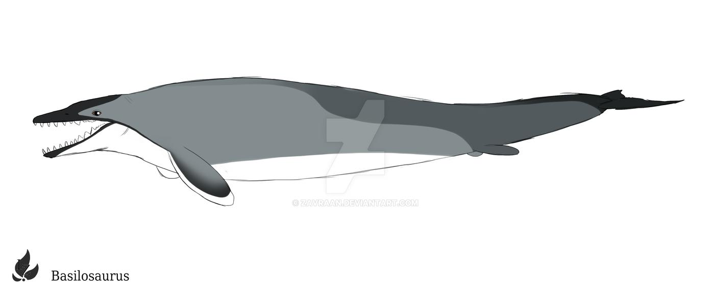 Basilosaurus by zavraan