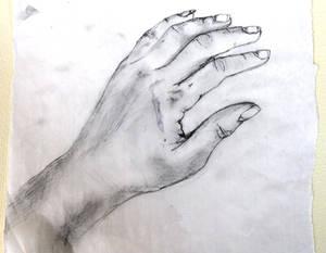 Study: My hand