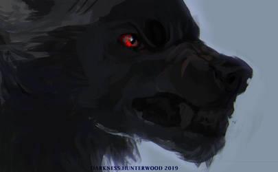 Sketch by DarknessHunterwood