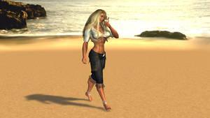 Melting on the beach