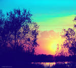 Dreamy Colours