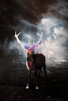 Magical Deer