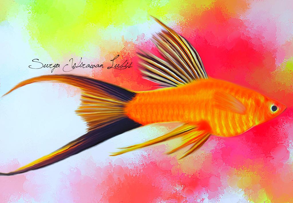 Ikan Guppy By Suryawirawanlubis On Deviantart
