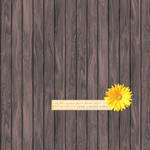 Wood and Flower Texture