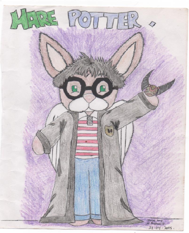 Hare Potter by kingfret