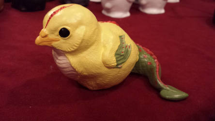 Yellow cockatrice chick