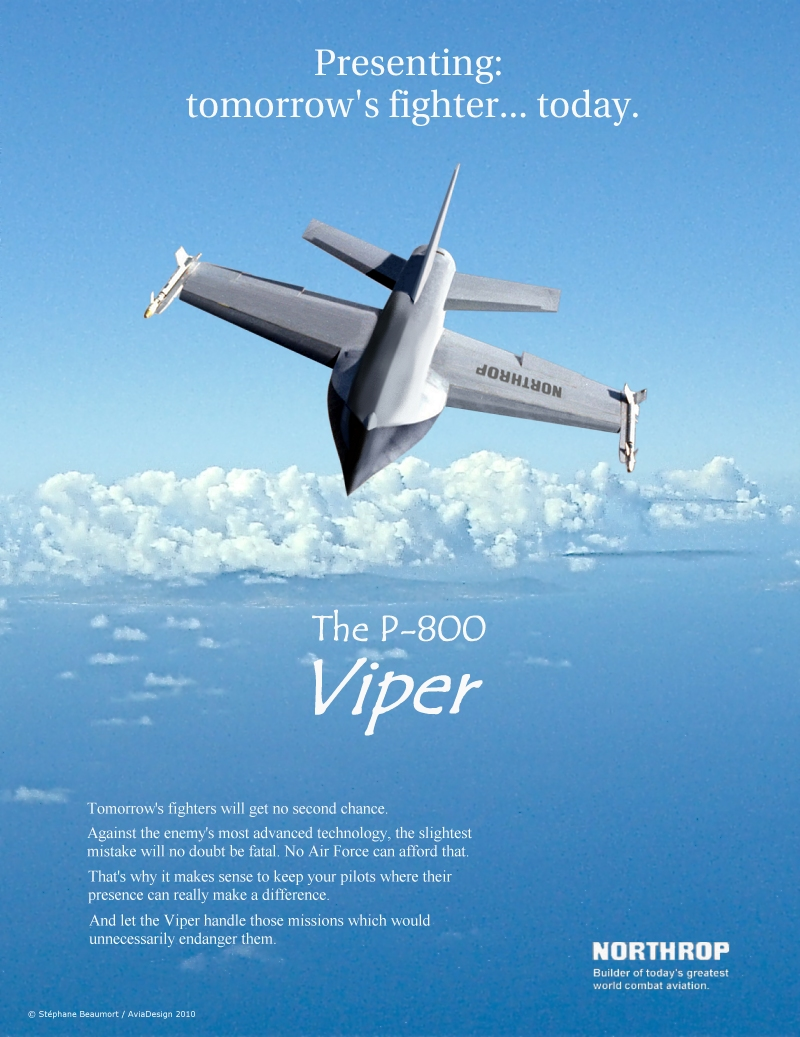 Northrop P-800 Viper USAF by Bispro