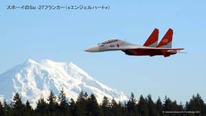 Japan Air Force Sukhoi Flanker