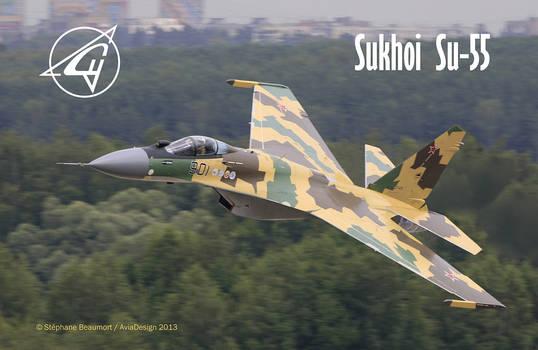 Sukhoi Su-55 'Freeride'