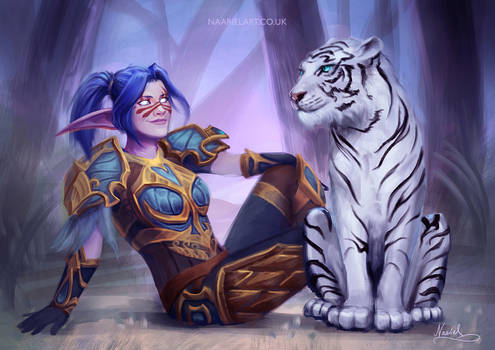Commission for Warpaladin