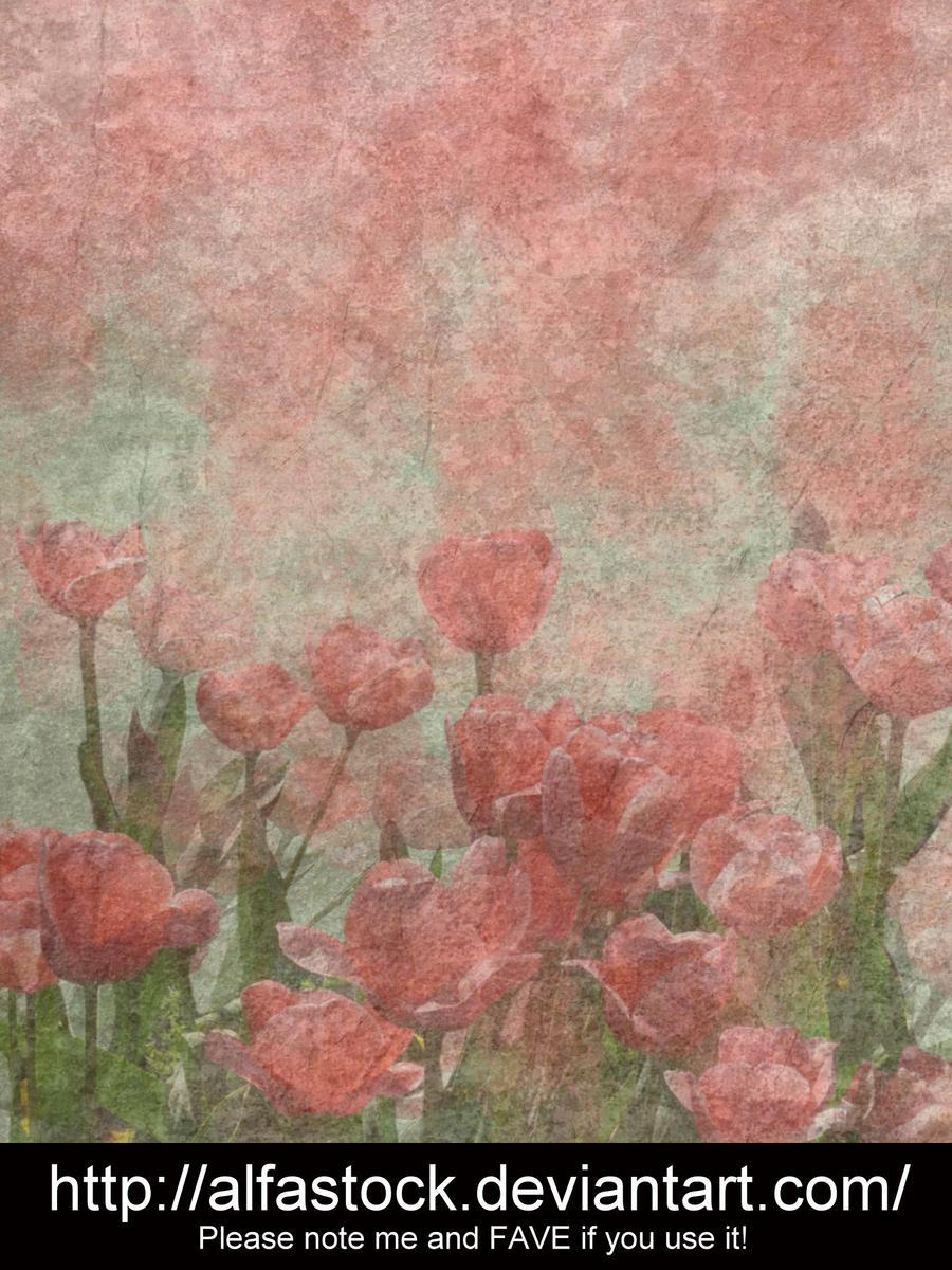 Texture 001 by alfastock
