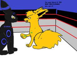 lol WWE POKEMONS by wolfwrathgirl