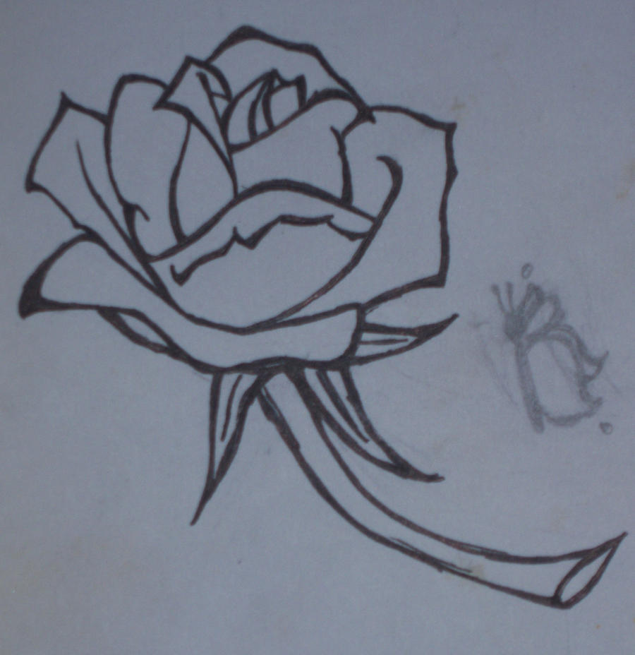 Line Drawing Of A Rose : Anna s rose line drawing by fritogyrl on deviantart