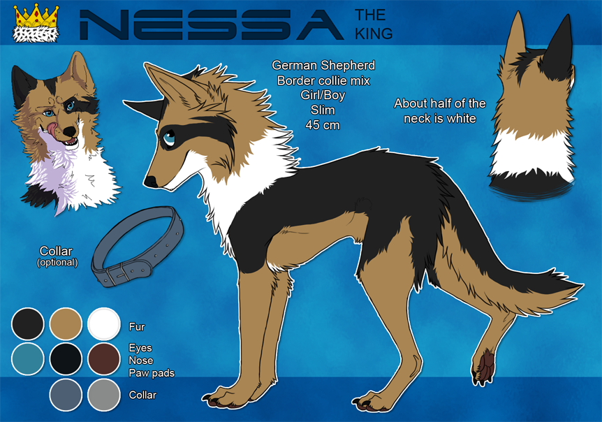 Fursona Nessa - reference sheet by sesukka