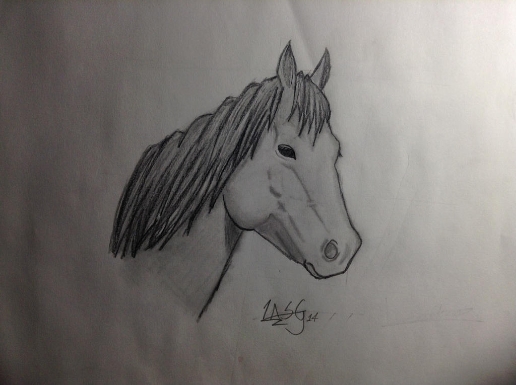 Horse Sketch by RockingGamerGirl