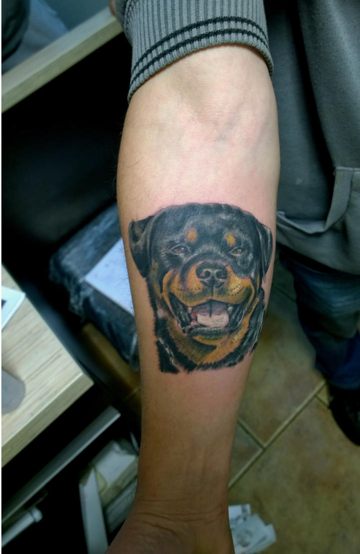 dog by karlinoboy