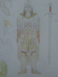 Ewijn's Armour (closeup)