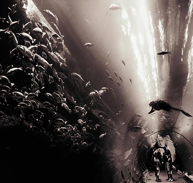 Ocean in a tunnel by gapgirl