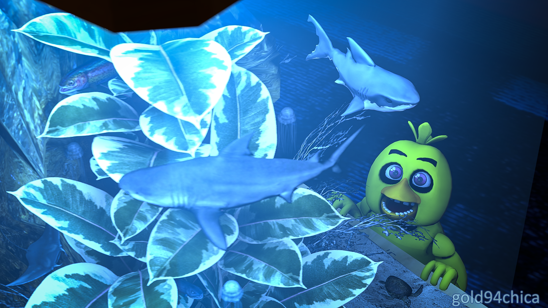 Fish tank sharks -  New Additions To My Fish Tank For Shark Week By Gold94chica