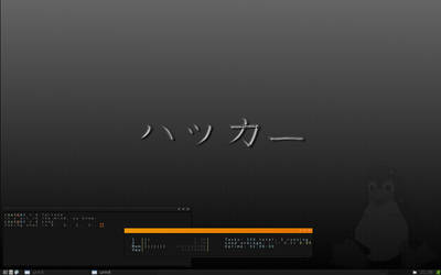 back to backtrack and openbox.
