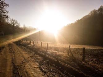 Beautiful morning Sun