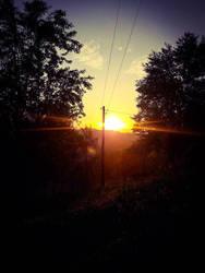 Sunrise beautiful morning
