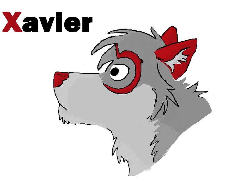 Xavier-XP's Profile Picture