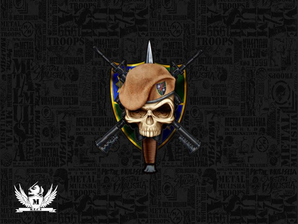 Army Ranger Logo By MIGUELF22 Wallpaper
