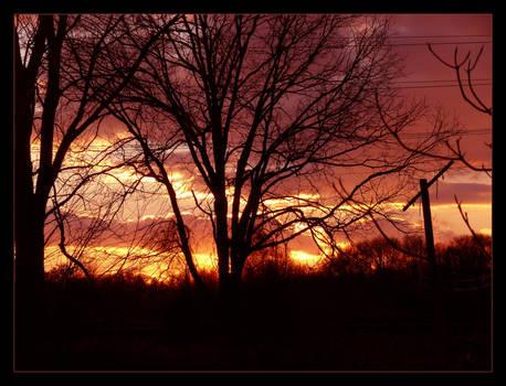 .:Jersey Sunset:.