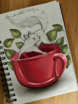 A Cup of Squirrel