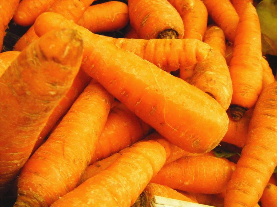 http://fc01.deviantart.net/fs50/i/2009/283/a/b/Carrots_by_jjankk.jpg