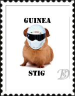 The Guinea Stig stamp by DanBoldy