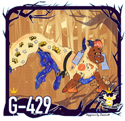 G 429